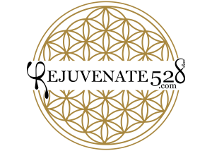 rejuvenate-528-medical-spa-sarasota-logo-black-lettering