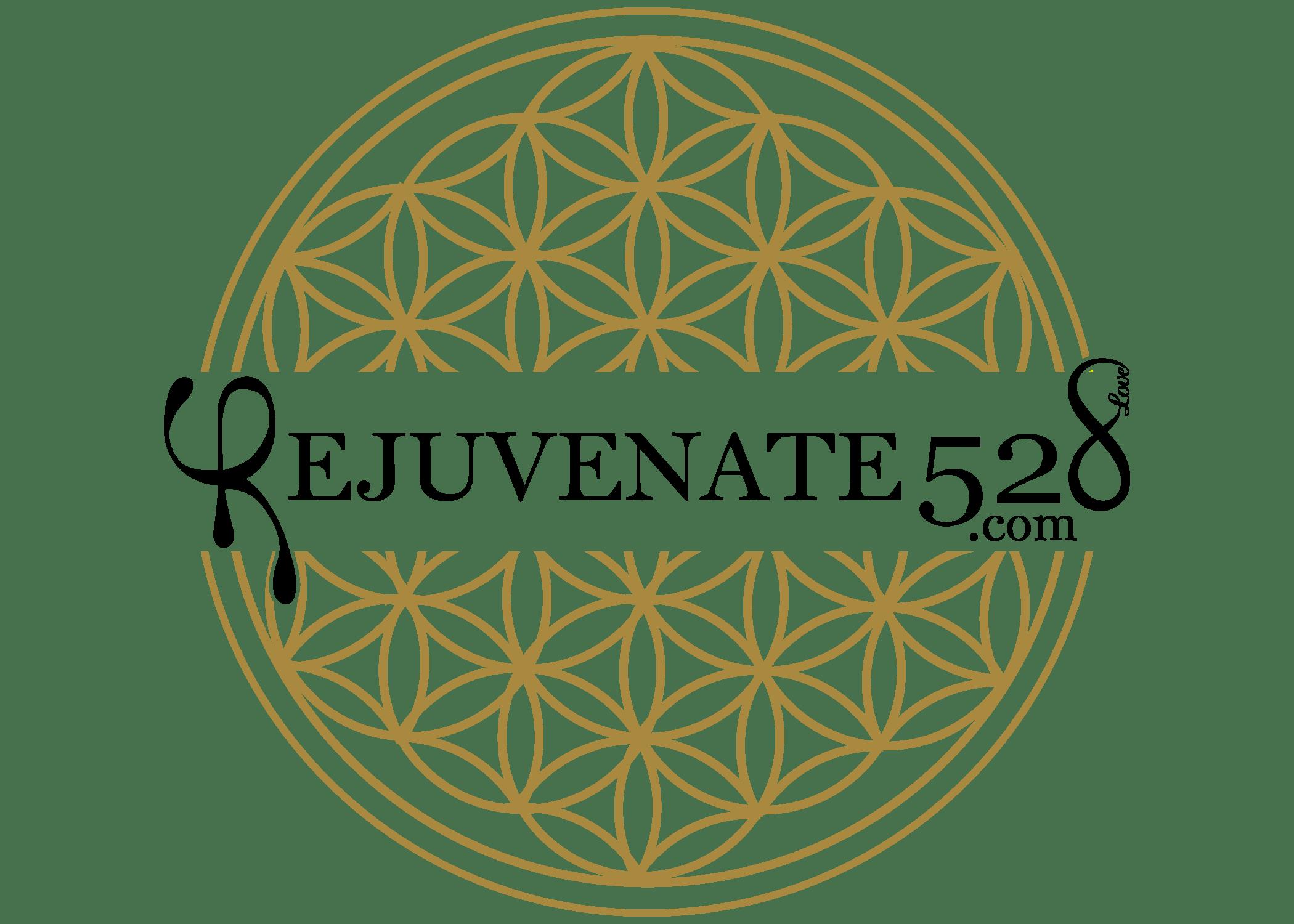rejuvenate-528-medical-spa-sarasota-logo-black-lettering